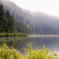 Стих о российской природе и Родине —  «Просторы России»